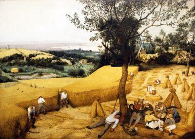 The Corn Harvest by Pieter Bruegel the Elder