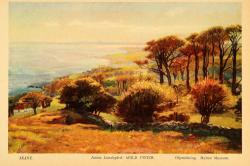 Arild Pinier by Justus Lundegard